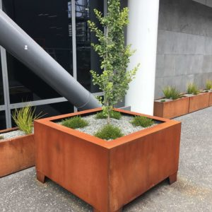 Cubic Planters